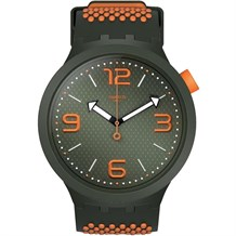 SWATCH SO27M101 KADIN QUARTZ PİLLİ SAAT  M.RENKLER
